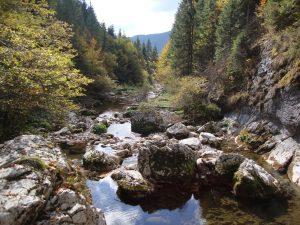 Valea Gardei